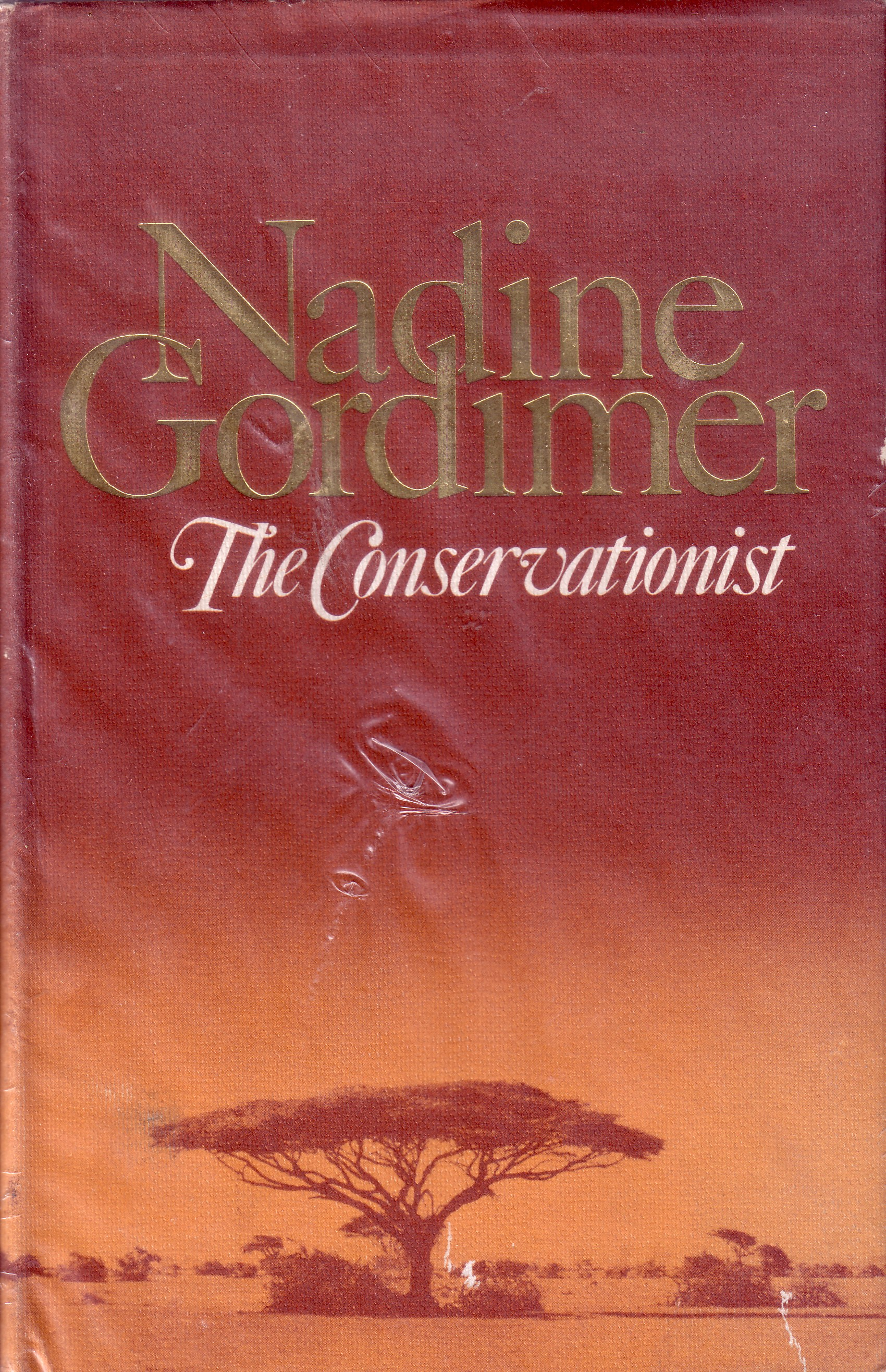 country lovers by nadine gordimer full text