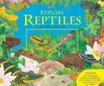 Explore Reptiles