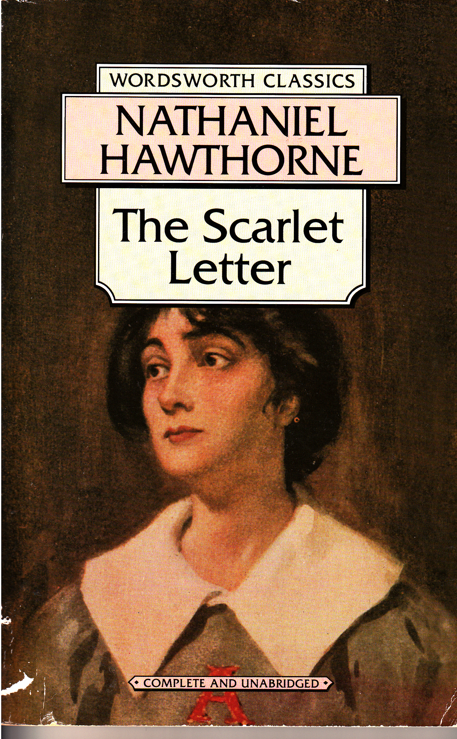 The scarlet letter by nathaniel hawthorne anz litlovers litblog the scarlet letter by nathaniel hawthorne madrichimfo Images
