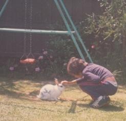 The rabbit as a pet